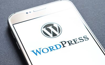 Why we use WordPress, and what should you be concerned of with Wix, Weebly, Squarespace, Vistaprint etc.?
